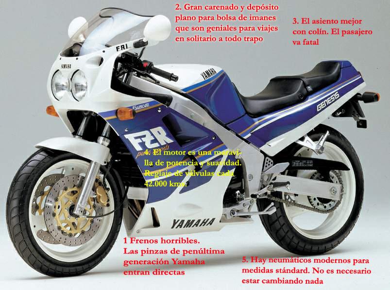 FZR1000 copia